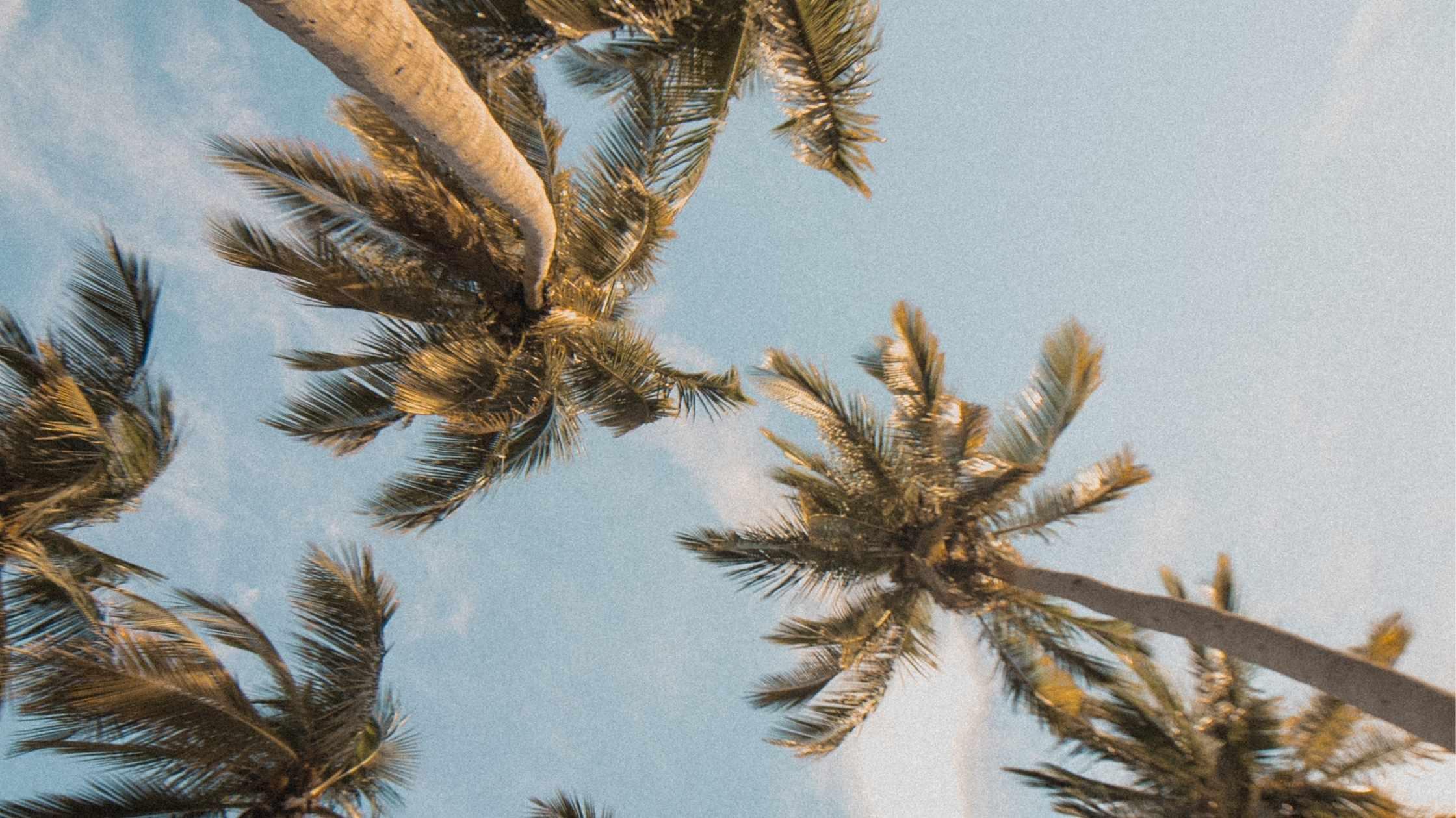 12 Summer Wardrobe Essentials + Where to Buy Them
