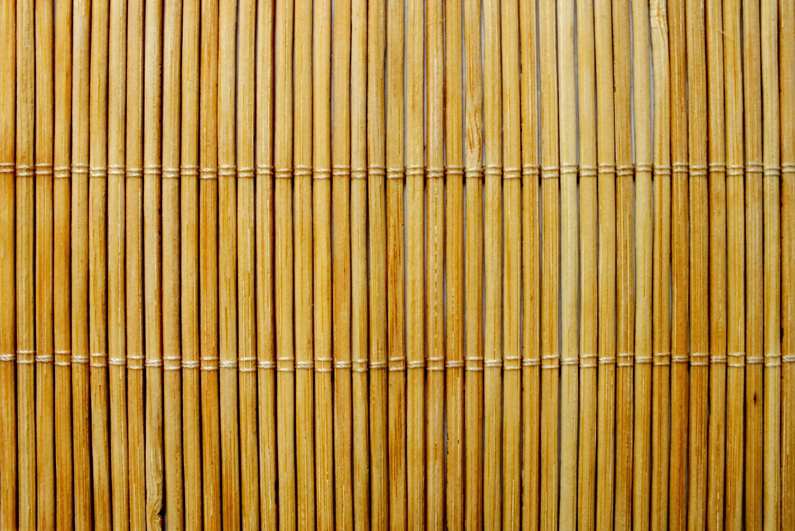 What is Bamboo Fabric? The Ultimate Guide